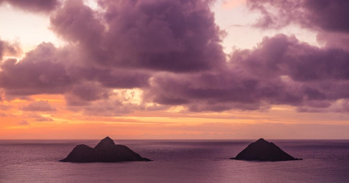 Ce carte ai lua cu tine pe o insulă pustie?